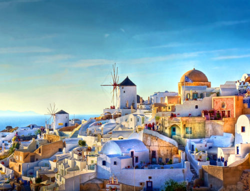 6 Reasons you have to choose Booking Day Trip!
